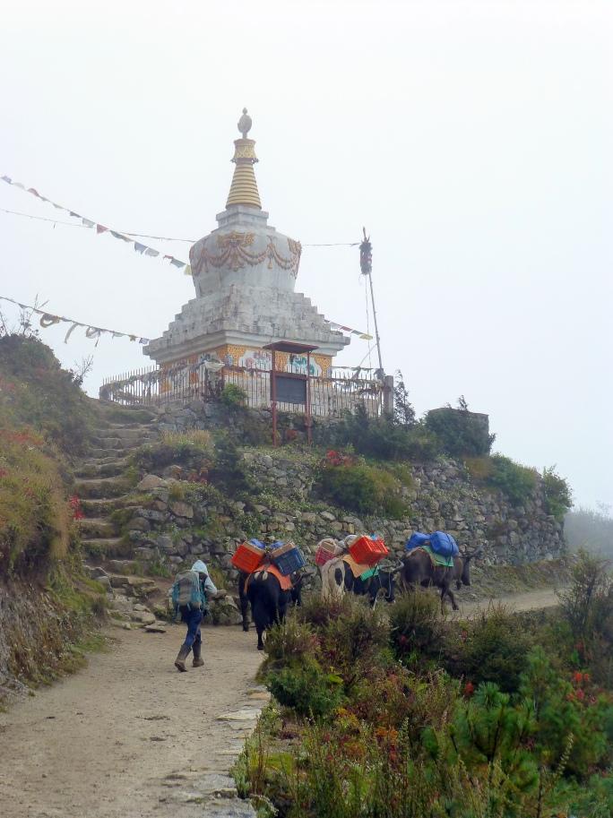 stupa2